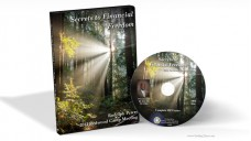 Secrets to Financial Freedom - Rudolph Peters (MP3)